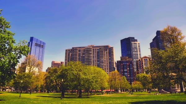 Apartment buildings by park