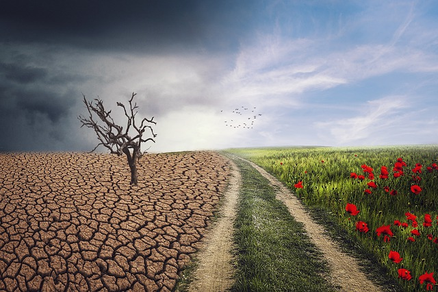 Climate change implications for real estate investing